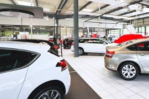 Das Autohaus bietet eine vielfältige Auswahl an Neuwagen.